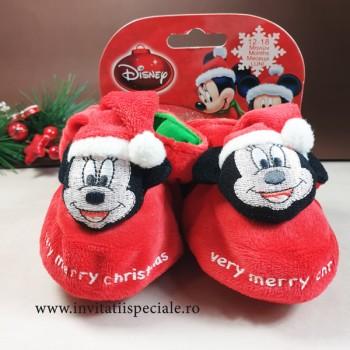Botosei Minnie Santa Claus