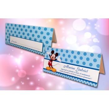 Plic Bani Mickey Mouse - Buline